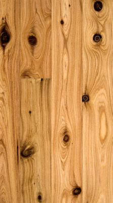 1/2&#034; x 3-1/4&#034; Natural Australian Cypress